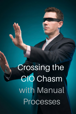 Crossing CIO Chasm
